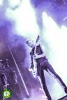 Rise Against (3)